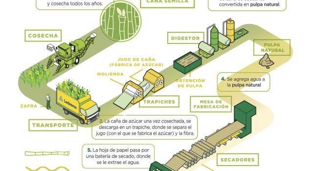 +Bio, La Nueva Línea De Cuadernos Innovadores Y Sustentables De Ledesma