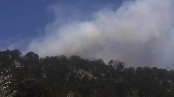 Neuquén: Más De 20 Brigadistas Combaten Un Incendio En El Cerro Ruca Choroi