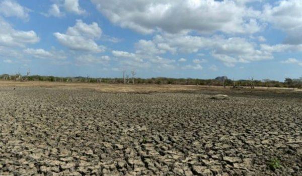Según Estudio, Economía De Países Fríos Se Ha Visto Beneficiada Por El Cambio Climático