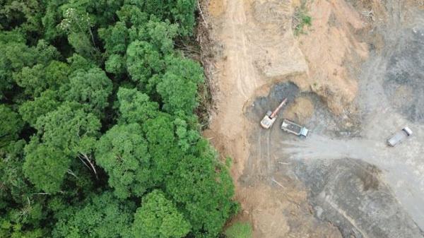 """El Gobierno De Brasil Ya Está Listo Para """"perforar"""" La Amazonia"""