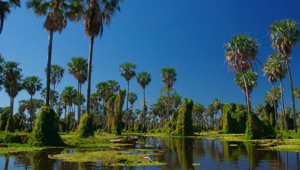 Argentina Ya Tiene Sus 7 Maravillas Naturales