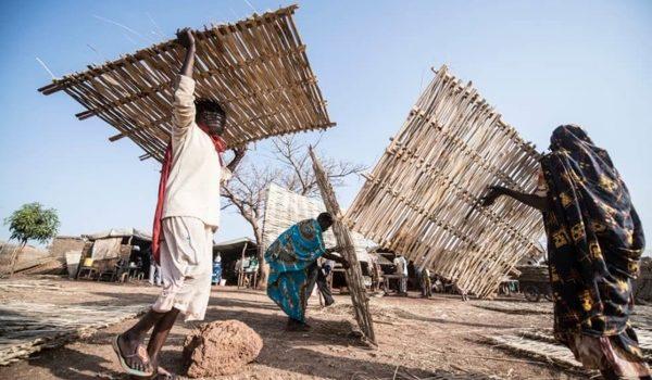 El Clima Se Convirtió En La Mayor Causa De Migración, Según Estudio