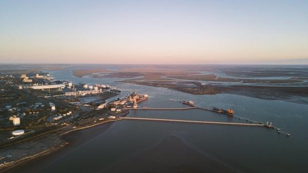 Detectan Hidrocarburos Y Metales Pesados En Especies Marinas De Bahía Blanca
