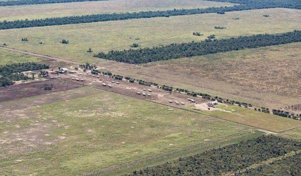 Deforestación: Estiman Que En 2028 Se Habrán Perdido Una Superficie De Bosques Nativos Equivalente A 200 Veces La Ciudad De Buenos Aires