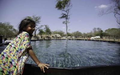 ONU: Cambiar El Uso De La Tierra Es Esencial Para El Clima